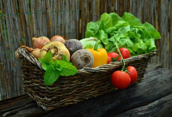 Cibo biologico i vantaggi per la salute