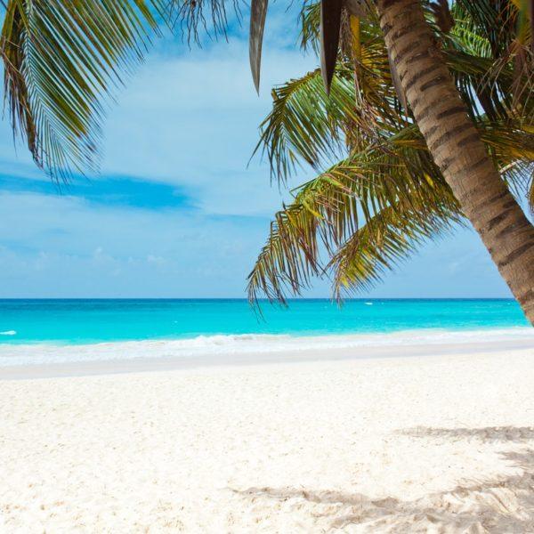 Viaggio nel Mar dei Caraibi: quali sono le isole imperdibili