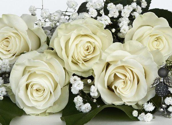Lista degli invitati delle nozze SOS